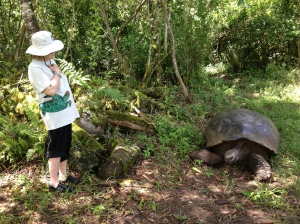 Wendy and a giant tortoise
